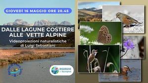 Risorgive - Giovedì un viaggio nella natura con i VIACQUA_locandina_5487_1.jpg (Art. corrente, Pag. 1, Foto normale)